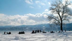 Lake-Zurich-36658